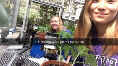 Kristin Toms and Kelly Pan collect photosynthetic and stomata rates from their tomato plants.