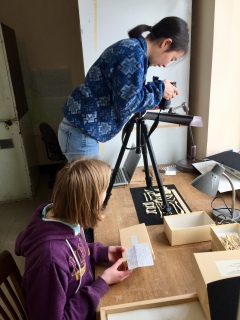 Sarah McPeek and Hannah Wedig take scaled photographs of bird skeletal specimens in the ornithology collection of the Smithsonian Museum of Natural History as part of the lab's effort to understand how flight affects the evolution of birds.