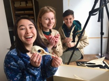 Hannah Wedig, Sarah McPeek, and Jess Kotnour show off their favorite bones of an Emperor Penguin in the ornithology collection of the Smithsonian Museum of Natural History. The Wright Lab spent spring break measuring bird bones at the Smithsonian to understand how flight affects the evolution of life history and ecology across birds.